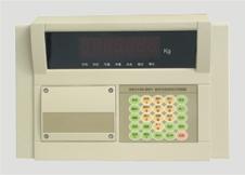XK-3190-DS1 数字式仪表
